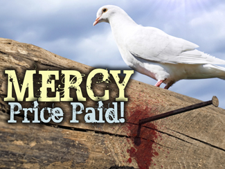 Mercy: Price Paid!